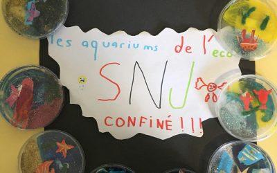 Aquariums réalisés par enfants présents à SNJ