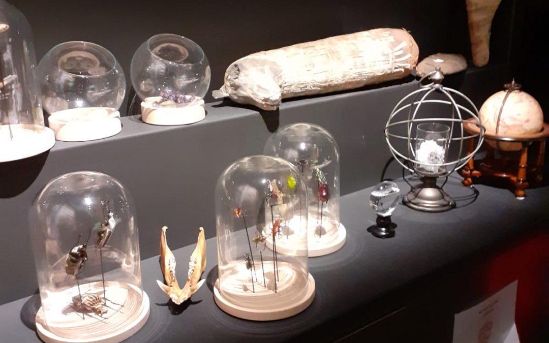 Protégé: Musée Confluence et Acquarium